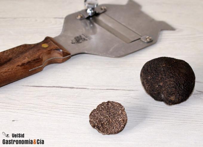 Canelones con bechamel y trufa negra