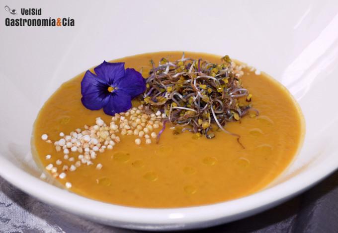 Crema de puerro y boniato con quinoa y germinados