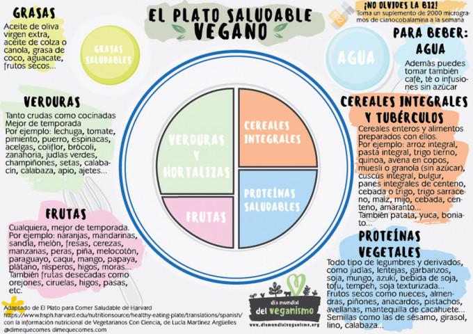 Plato Harvard Vegano
