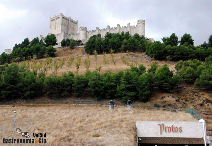 Bodegas Protos D.O. Ribera del Duero