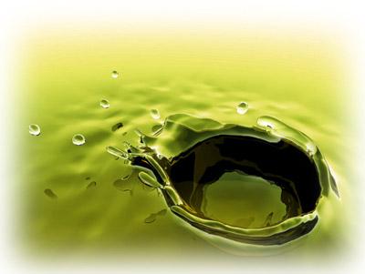 aceite_polifenoles_investig.jpg