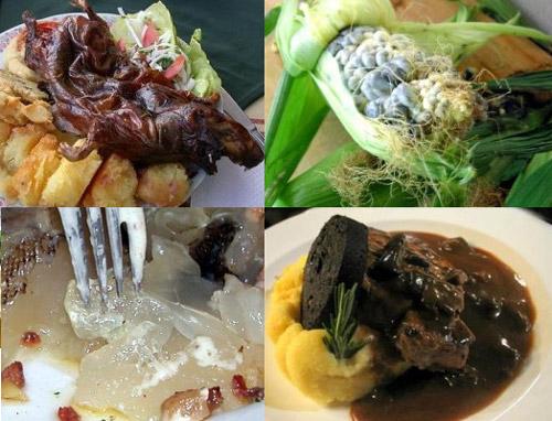 gastronomia_exotica_1.jpg