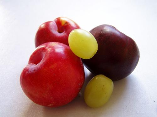 alimentacion_pesticidas.jpg