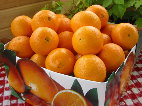 naranjas_valencia_china.jpg