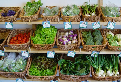 Dinamarca consumo ecologicos