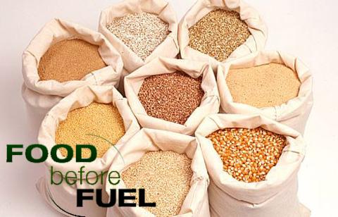 food_before_fuel