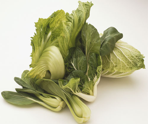 Importacion frutas y verduras Rusia