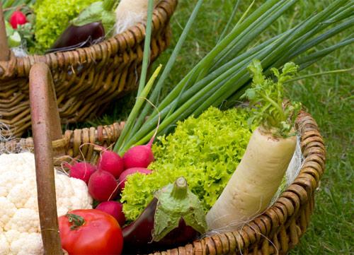 Alimentos ecológicos cualidades organolépticas