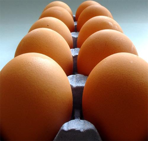 Conservar los huevos