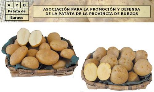 Patata de Burgos