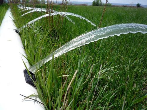 investigación agua de riego