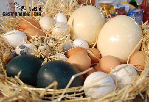 Isótopos de los huevos