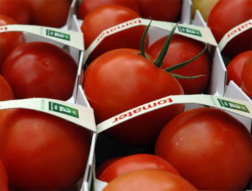 valores nutricionales en los alimentos orgánicos