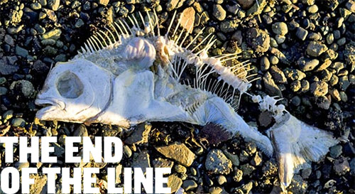 Documental sobre la sobrepesca marina