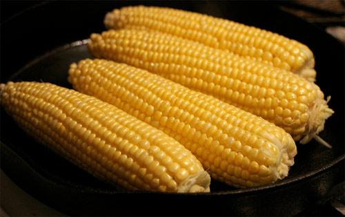 Debate sobre alimentos transgénicos