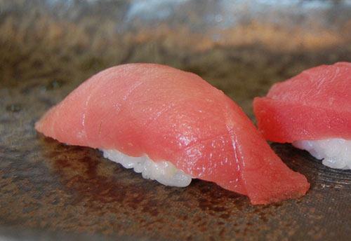 Prohibición pesca del atún