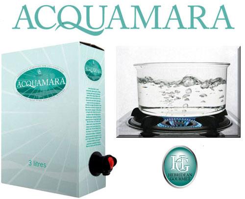 Agua de mar embotellada para cocinar gastronom a c a Cocinar ortigas de mar