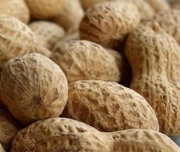 Cacahuetes alergia
