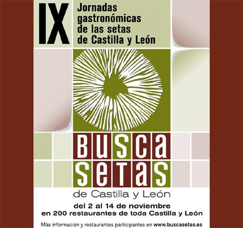 IX Jornadas gastronómicas de las setas de Castilla y León