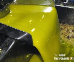 Elaboración de aceite de oliva virgen
