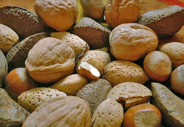 Conservar frutos secos