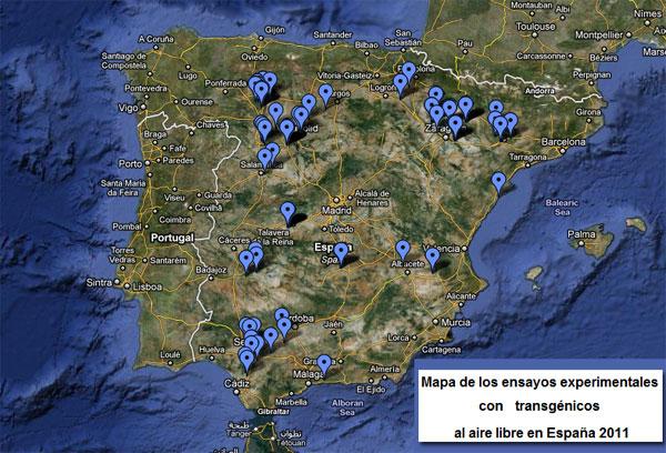 Experimentos transgénicos en España
