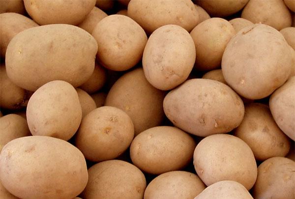 Precios de las patatas 2011