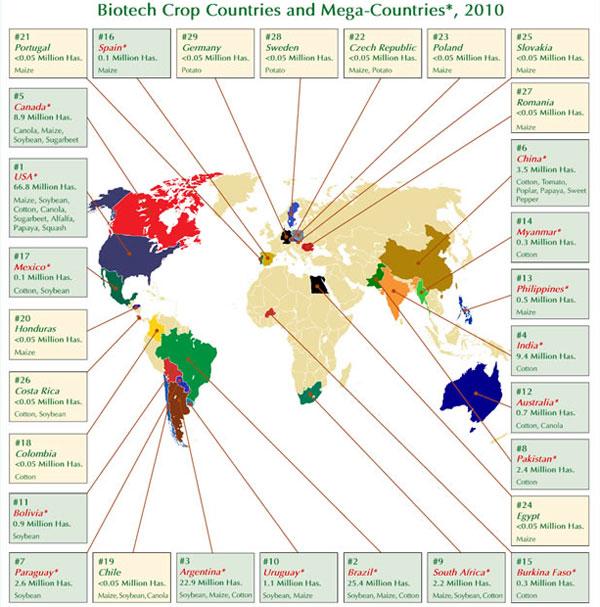 Datos sobre alimentos transgénicos en el año 2010