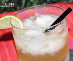 Gin & Gin con limón granizado