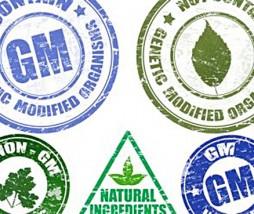 Etiquetas en alimentos modificados genéticamente