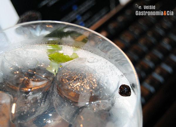 Gin Tonic perfecto de Martin Miller's