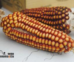 Precio de los alimentos en Europa