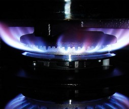 Cocinar a fuego vivo