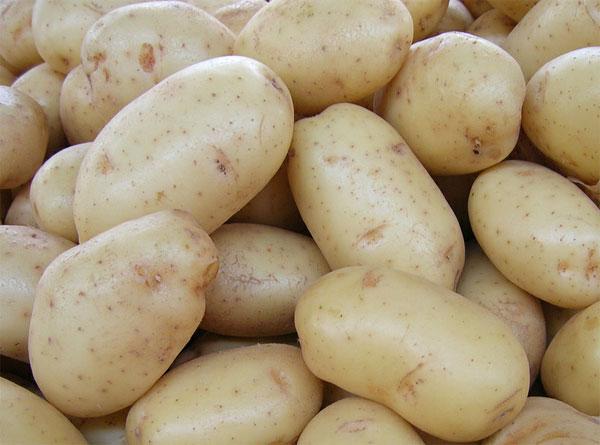 Crisis de la patata