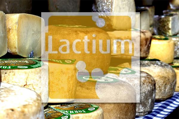 Feria queso artesano de Vic