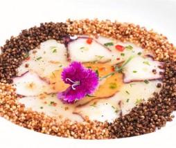Recetario Gourmet de la Quinua