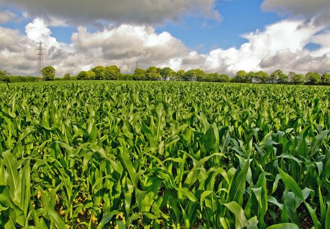 Agricultura satelital
