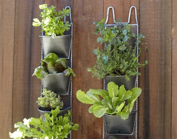 Huerto urbano vertical gastronom a c a for Jardin vertical de fieltro en formato kit