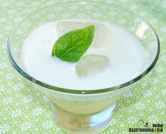 Gin Tonic con melón