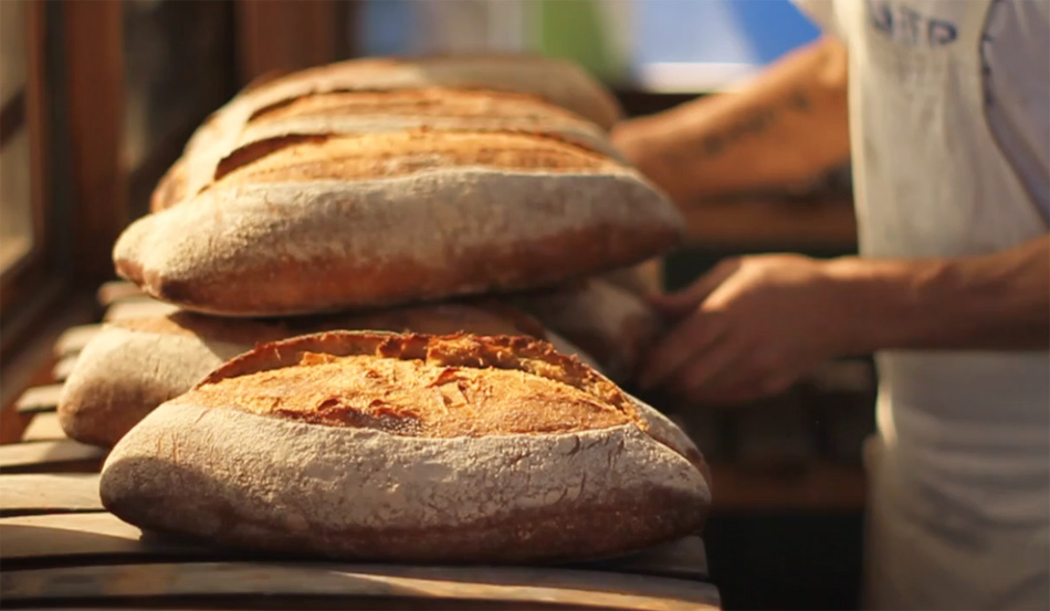 Bread and the Baker. Documental