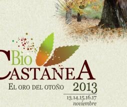 Feria Castañicultura