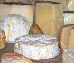 Buscador de quesos