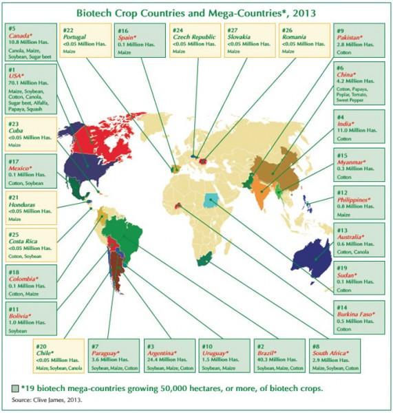 Alimentos modificados genéticamente en el mundo