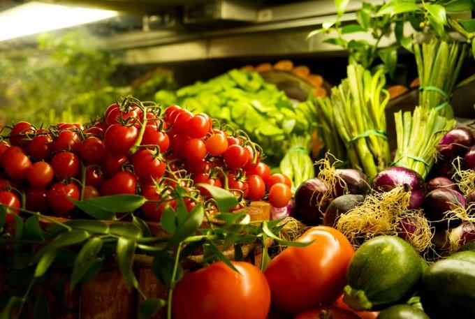 Legislación en materia alimentaria en Europa