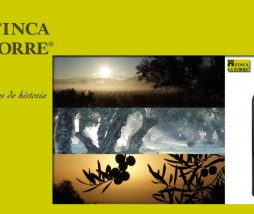 Premios Aceite de Oliva Virgen Extra