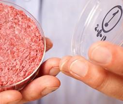 Producción de carne in vitro