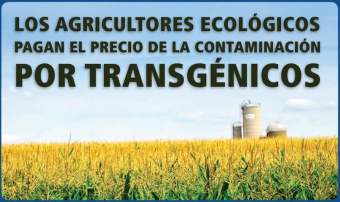 Medidas para evitar la contaminación transgénica