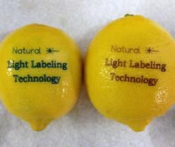 Etiquetas láser