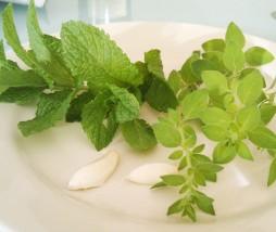 Sazonador cocina griega