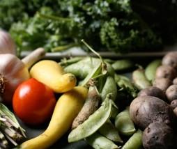 Alimentos ecológicos europeos
